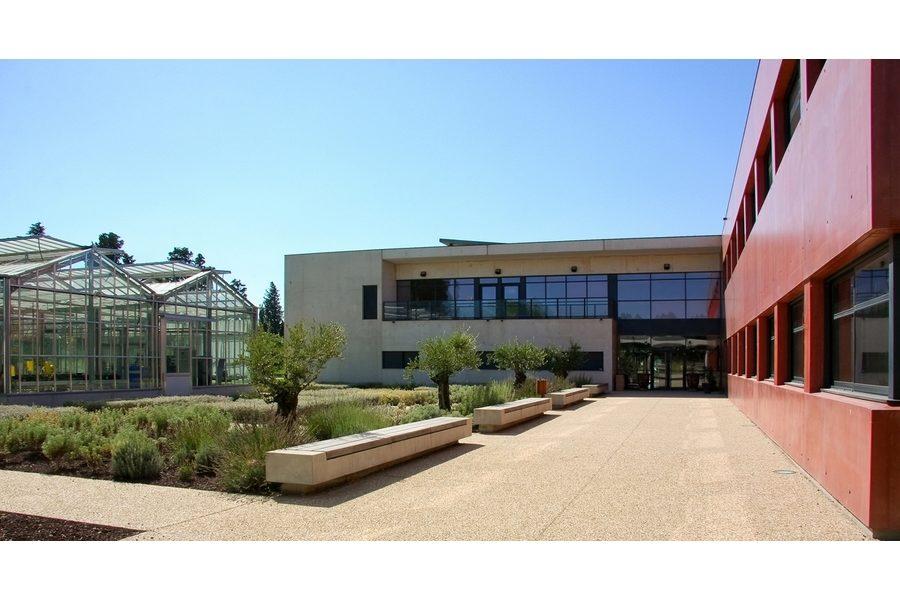 Leteissier Corriol - Agence d'architecture - Pôle Agrosciences et serre pédagogique horticole Avignon 84